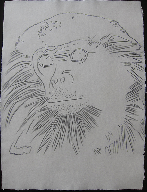 Andy Warhol   Vanishing Animals - Douc Langur.