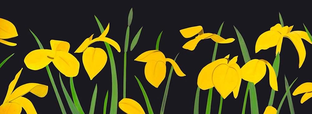 Alex Katz. Yellow Flags 2. Pigmentdruck. 43 x 114 cm. signiert & nummeriert. 123/125.