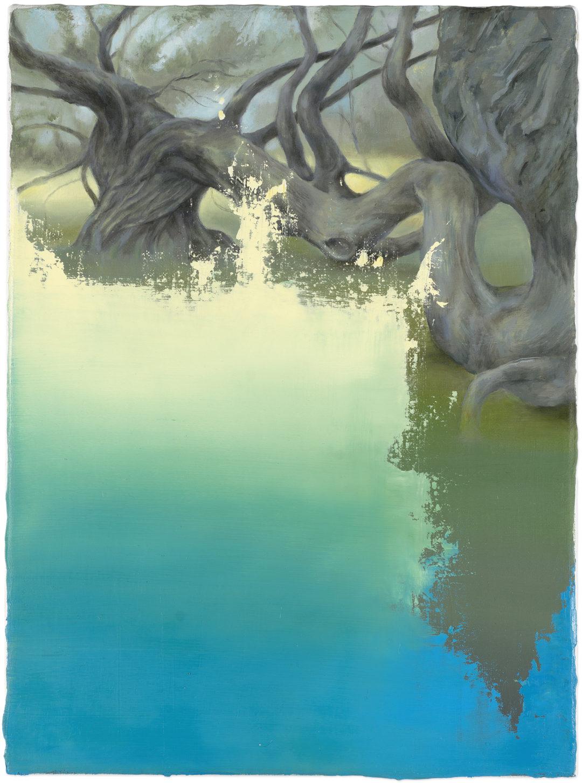 Isabelle Dutoit | Verborgene Landschaft 5.