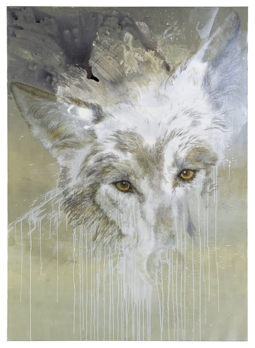 Isabelle Dutoit | Wolfskopf.